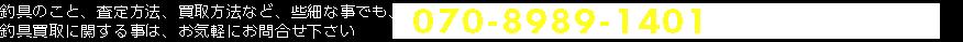 0120-730-338